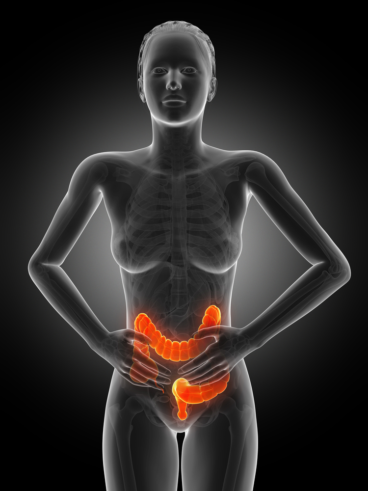 Fibromyalgia Patients Need Close Monitoring for IBS, Study Says