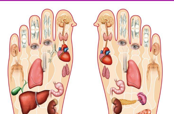 Reflexology to Relieve Fibro Pain