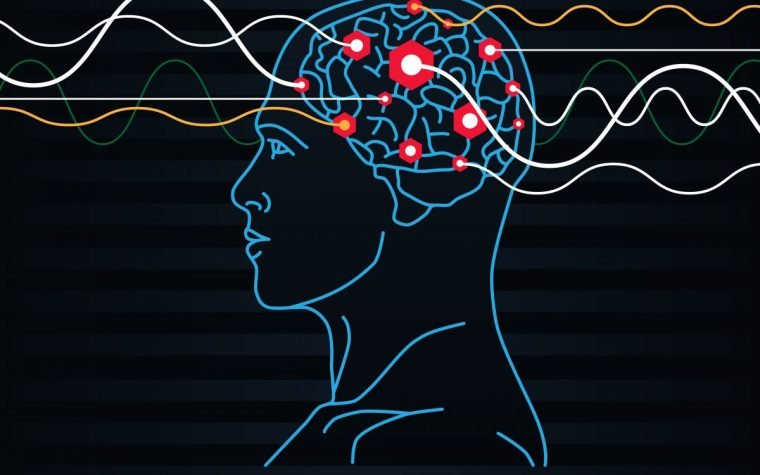 oscillations in brain waves