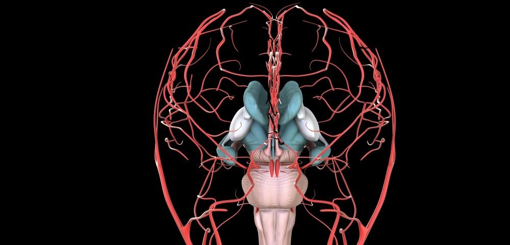 Fibromyalgia Patients Exhibit Changes in Cerebral Blood Flow, Study ...