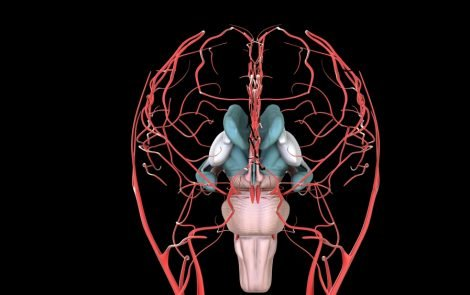 Hyperreactive Brain Network May Be Cause of Chronic Pain in Fibromyalgia, Study Suggests