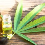 medical cannabis for fibromyalgia